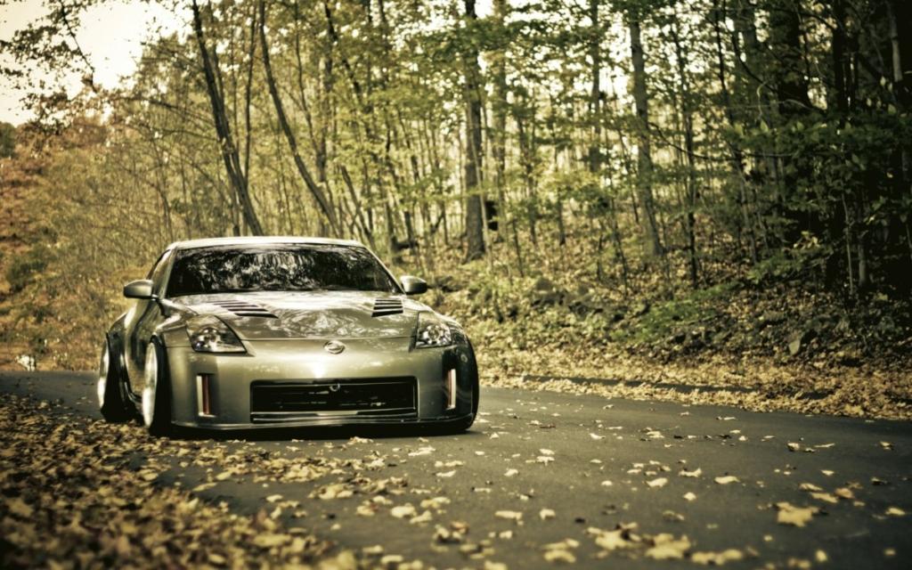 Вождение осенью. Какую опасность таят опавшие листья