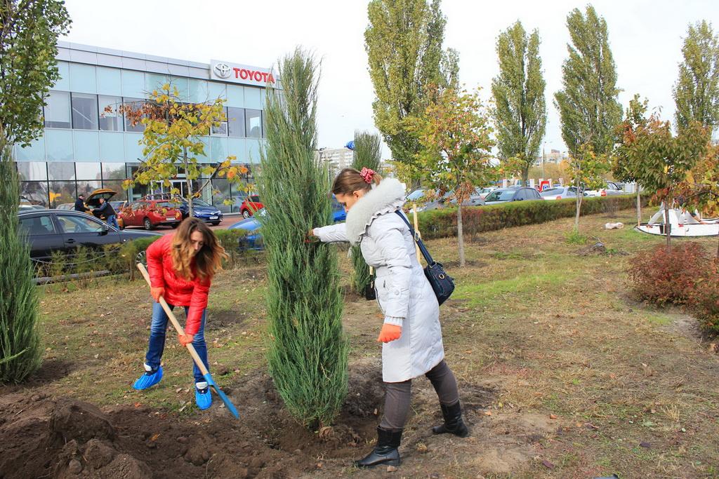 Эко-акция от «Тойота-Украина» − «Купил машину? Посади дерево!»