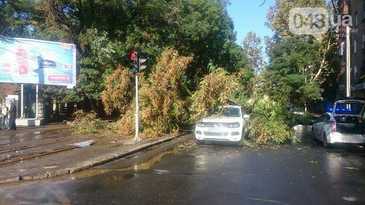 Потоп в Одессе. Машины вновь тонут, а деревья падают