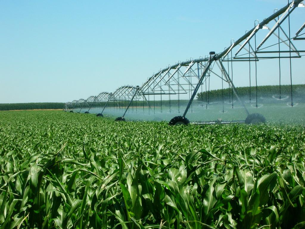 Сельхозпродукция АМАКО