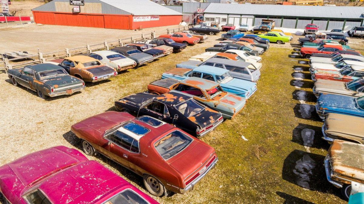Житель Канады продает земельный участок вместе с 340 автомобилями