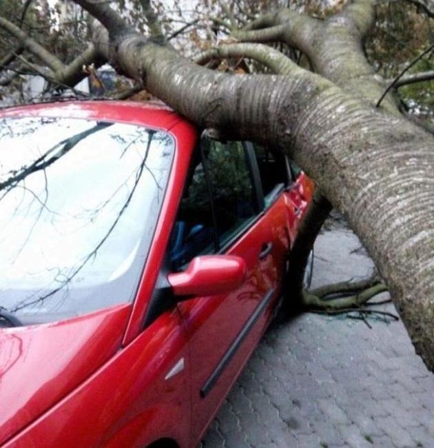 Ураган в Украине: разбитые авто и перекрытые дороги