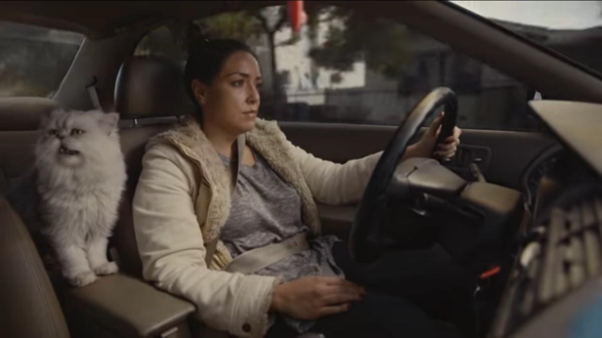 Вирусная реклама увеличила стоимость подержанного автомобиля в300 раз