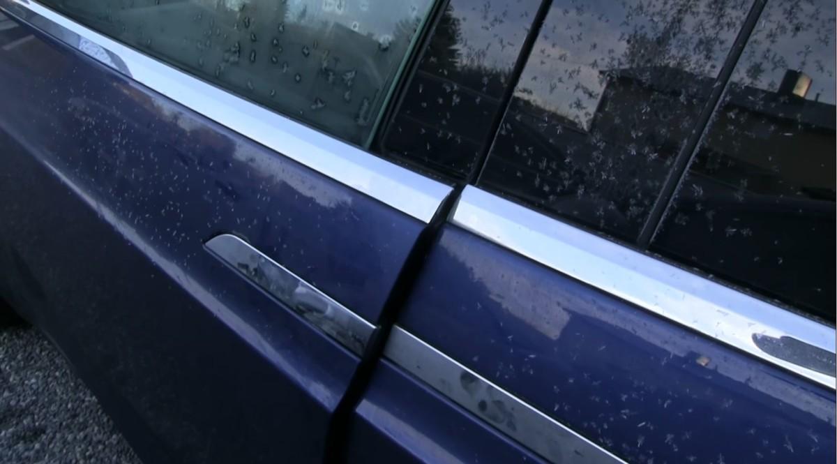 Как ведет себя электромобиль в мороз (видео)