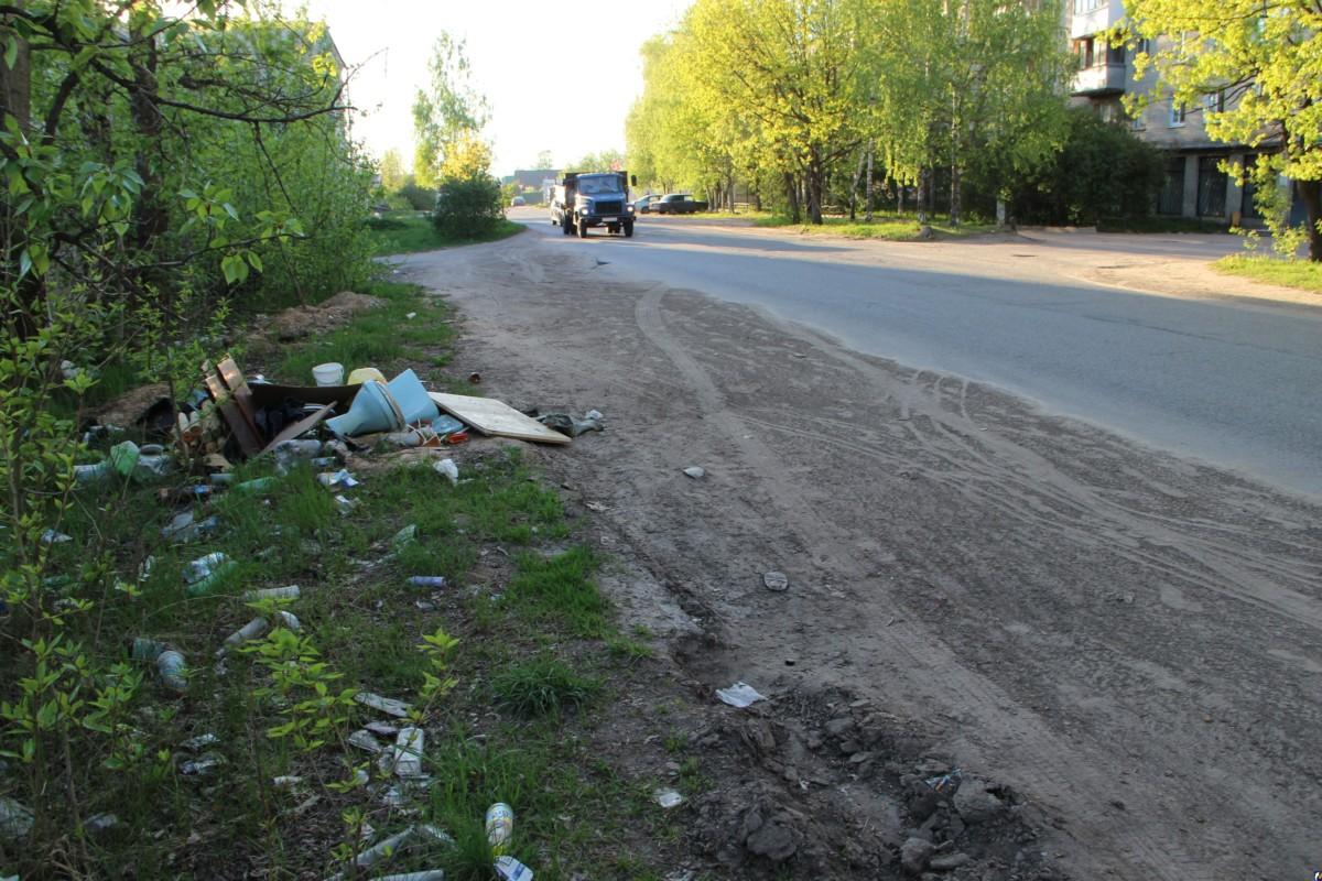 штрафы за мусор на дорогах