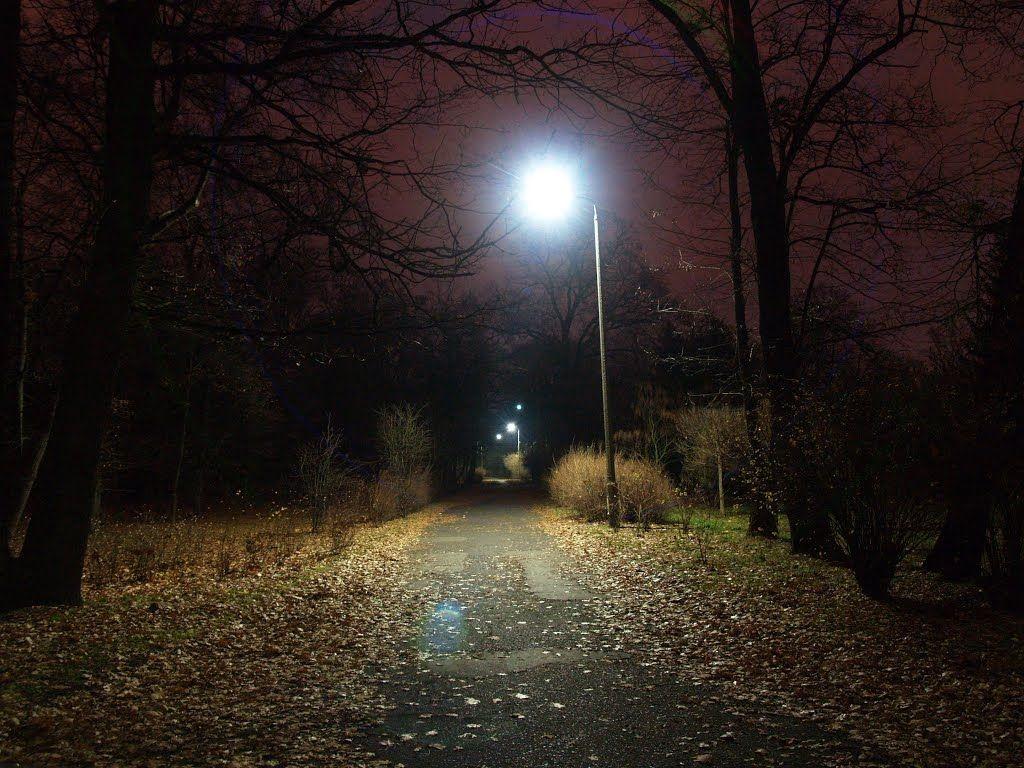 уличное освещение - парк