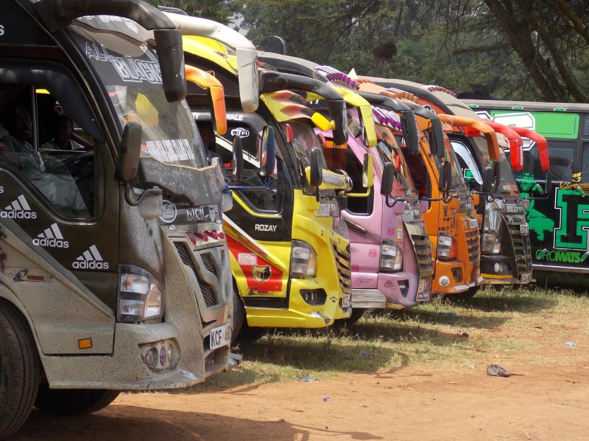 автобус матату _3